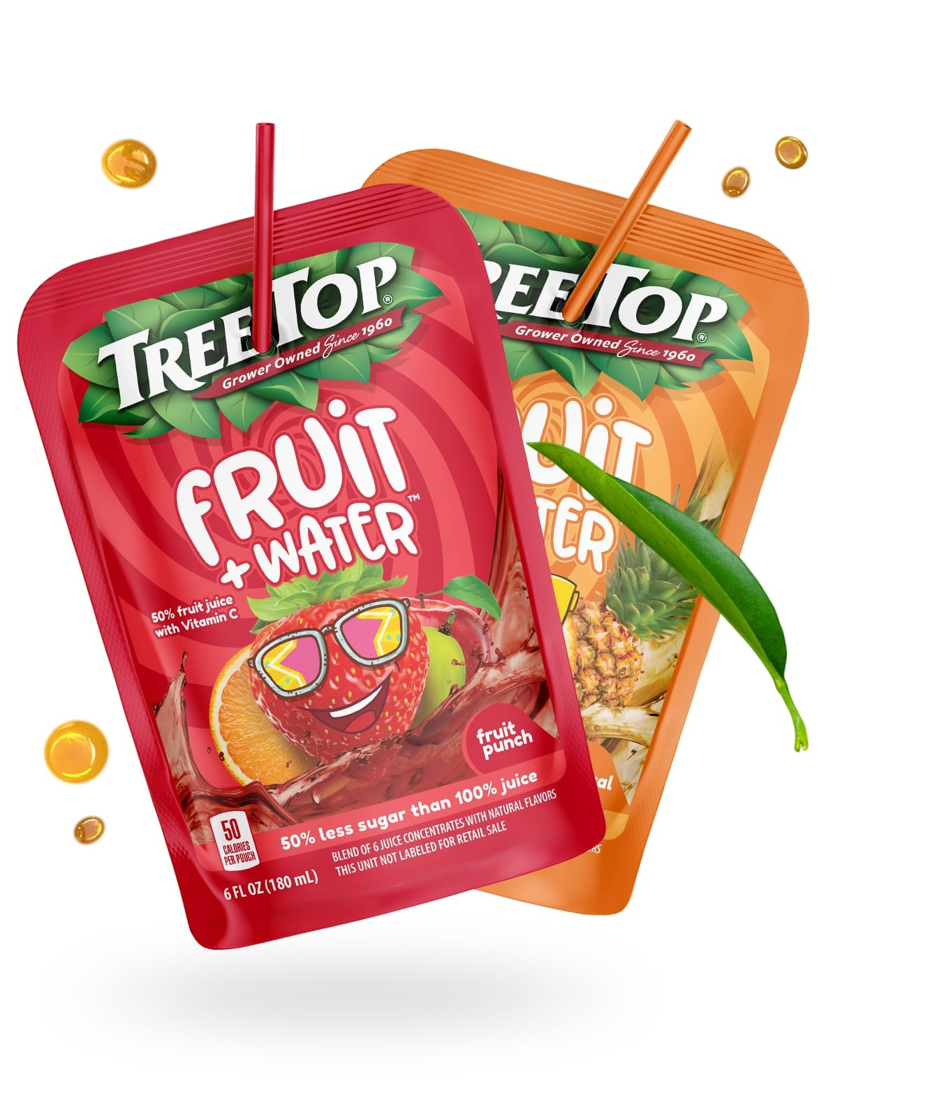 treetop fruit fruit punch branding